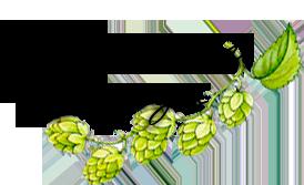 Logo HallertauDesign